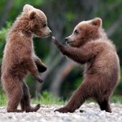Русский рукопашный бой, 6+
